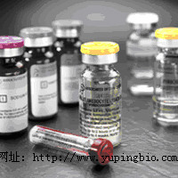 植物血凝素(PHA)ELISA试剂盒