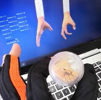 wiseglove5F+虚拟现实仿真装配手部动作捕捉手臂位置跟踪触觉力反馈数据手套