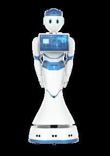 锐曼品牌  人工智能AI机器人  RMB-102系列
