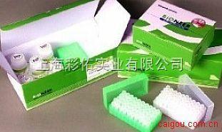 梅毒特异性抗体试条金标测试盒