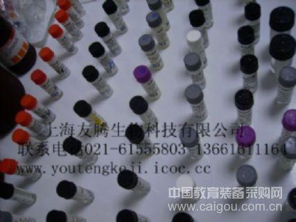 人CXCL2/MIP-2 Human CXCL2/MIP-2 ELISA Kit