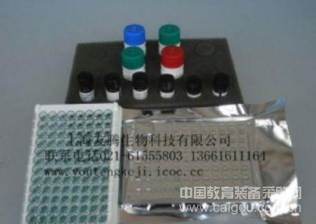 人血清淀粉样蛋白A(SAA) Human Serum amyloid A ELISA Kit