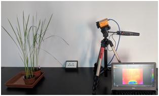 光谱成像技术及其应用