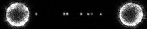 荧光光镊对Cas9脱靶效应实时可视化评估