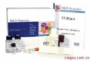 人碱性成纤维细胞生长因子4Elisa试剂盒,bFGF-4试剂盒