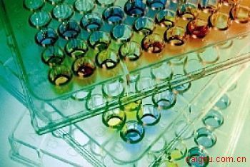 人脑钠素/脑钠尿肽Elisa试剂盒,BNP试剂盒