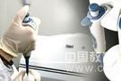 科学家开展了对新型猪流感病毒的监测