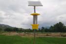 太阳能杀虫灯符合农业可持续发展的要求