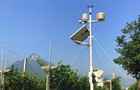 智慧农业的风向标-农业物联网