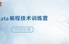 Stata编程技术训练营—云端培训