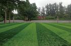 北京大學附屬小學操場鋪設人造草坪