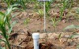 清易电子 QY-800S管式土壤墒情测量仪 土壤水分测量仪 管式结构,多层测量