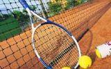 供应北京厂家特价优质LW-02网球网子