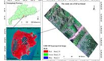 基于S185机载高光谱与DSM数据的红树林树种分类研究