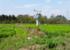 河北省涿州市应用自动监测系统