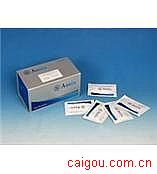 小鼠TIMP-2,基质金属蛋白酶抑制因子2Elisa试剂盒