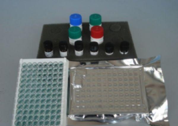 小鼠骨形成蛋白6(BMP-6)ELISA试剂盒