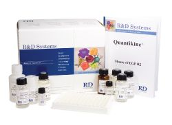 大鼠甲状腺球蛋白(TG)ELISA试剂盒