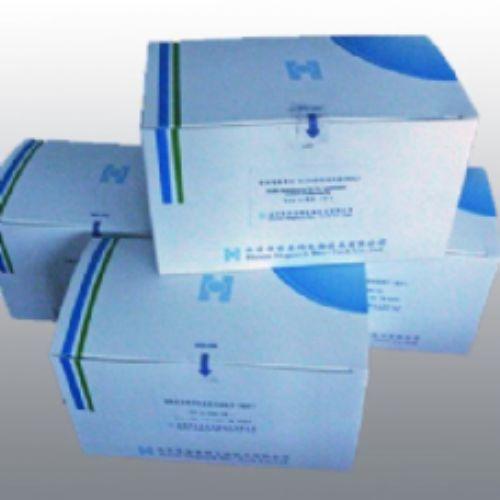 大鼠醛固酮(ALD)ELISA试剂盒