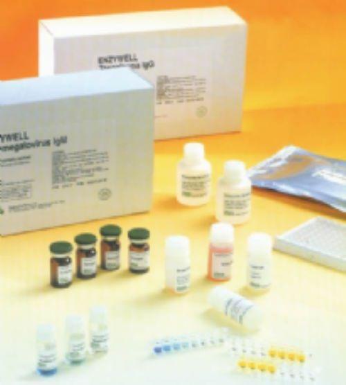 人生长调节致癌基因γ/黑素瘤生长刺激因子(GROγ/CXCL3/MGSA)ELISA试剂盒