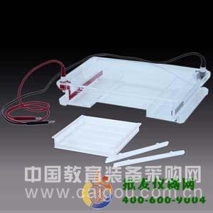 琼脂糖水平电泳仪(大) DYCP-31F