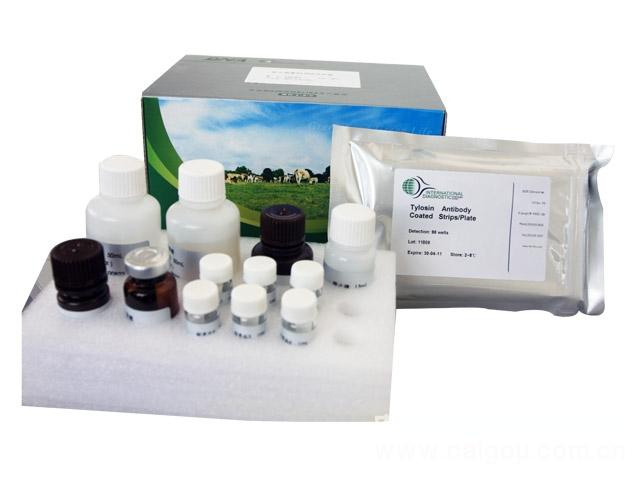 人表面膜免疫球蛋白M(mIgM)ELISA试剂盒