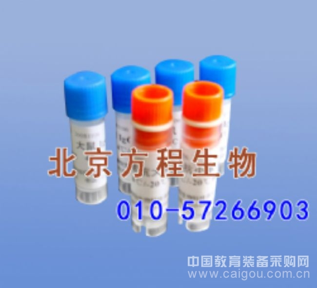 大鼠诱导型NO合酶(iNOS)