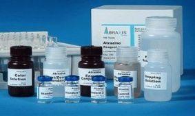 人胸腺活化调节趋化因子(TARC/CCL17)ELISA试剂盒北京代测