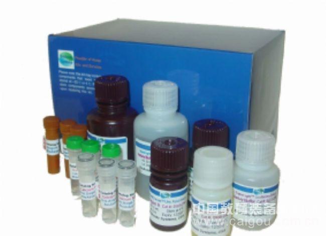 小鼠糖皮质激素受体α(GR-α)ELISA试剂盒