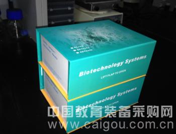 兔内皮素-1(rabbit ET-1)试剂盒