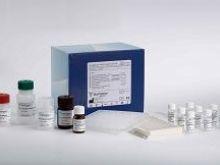人糖基化依赖的细胞黏附分子(GlyCAM-1)Elisa试剂盒
