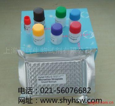 小鼠白三烯C4(LTC4)  ELISA Kit