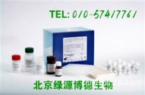 人醛缩酶 Elisa kit价格,ALD进口试剂盒说明书