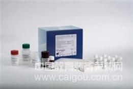 兔血小板活化因子(PAF)ELISA Kit