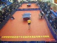 羽毛球運動地板 乒乓球運動地板